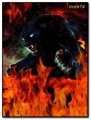panther in fire