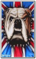 bulldog 240x400