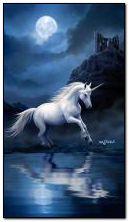 licorne au clair de lune