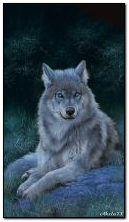 Serigala lunar