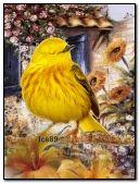 Cute little yellow bird