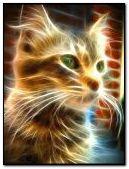 fractal glow cat