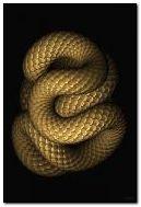 движение змей