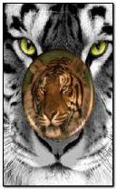 TIGER MEDAL