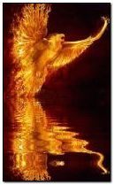 Crying phoenix