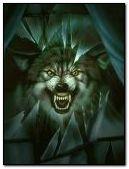 Wolves Eyes