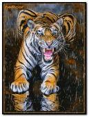 02hc tigre 240x320 b