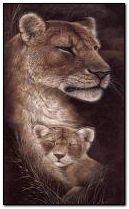 นอนสิงโต