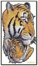 tigres hc 360