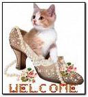 Kitten In A Shoe