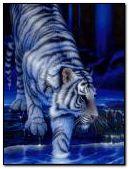 वाघ पांढरा