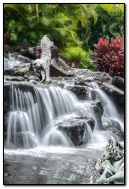 white tigers at the Falls