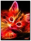 Colorful Neon Kitten