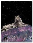 Небо тигр
