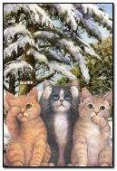 tre gatti intelligenti