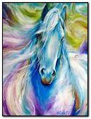 bel cavallo