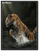 04 hc tigre 240