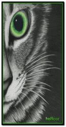 gato hc 200x400