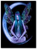 angel fairy 22