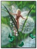 Naked Fairy