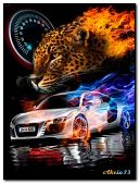 Animal speed