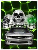 skulls car