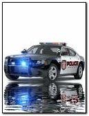 Police car*