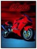Ninja motor