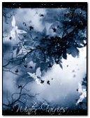 Zimowe wróżki