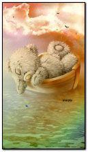 Teddy in una barca