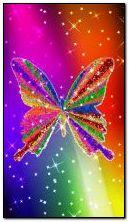 Raimbow butterfly