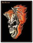 03 Skull hc 240
