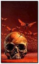 fantasy skull 240x400