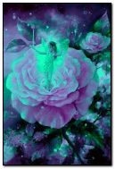 Feenhafte Rosen