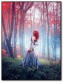 Enchanted lady in forest
