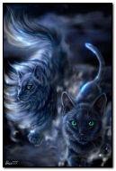 fantastic cats