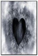 coração negro.
