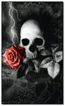 Rose and skull