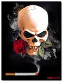 A cigarette, a skull with a rose