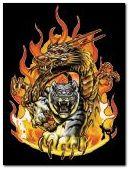 tigre y dragon