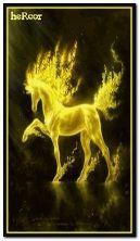 caballo amarillo b