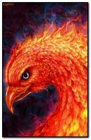 불타는 피닉스