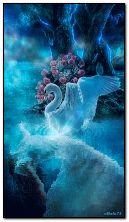 天鹅和溺水的女人