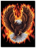 Fire GhostT Rider