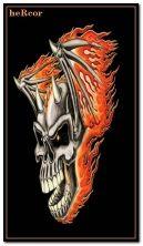03 Skull hc 360
