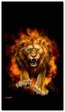 Sư tử lửa