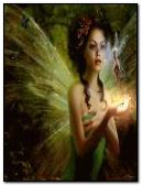 fées de papillons