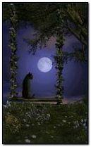 Moon cat