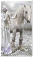 सफ़ेद घोडा