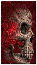 360 x 640 skull